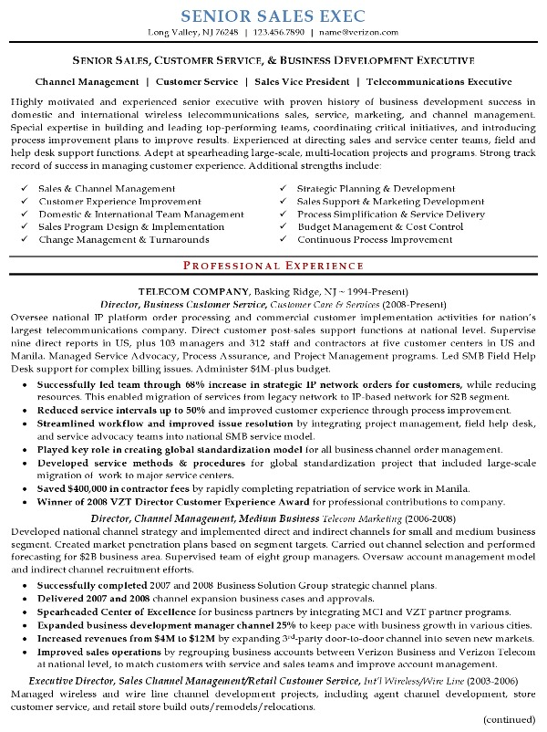 Executive Resume Samples Professional Resume Samples Executive