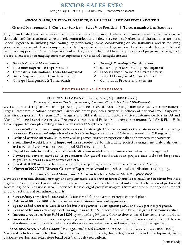 Resume Sample 16 - Senior Sales Executive resume – Career ...